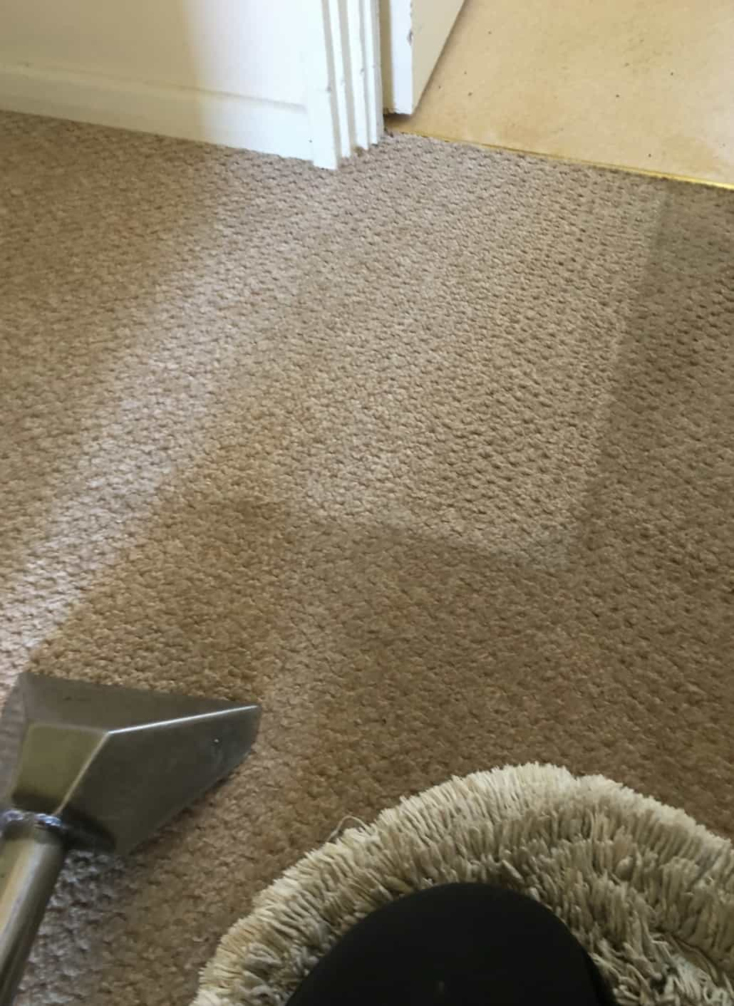 Carpet Cleaning Before & After Photos 10