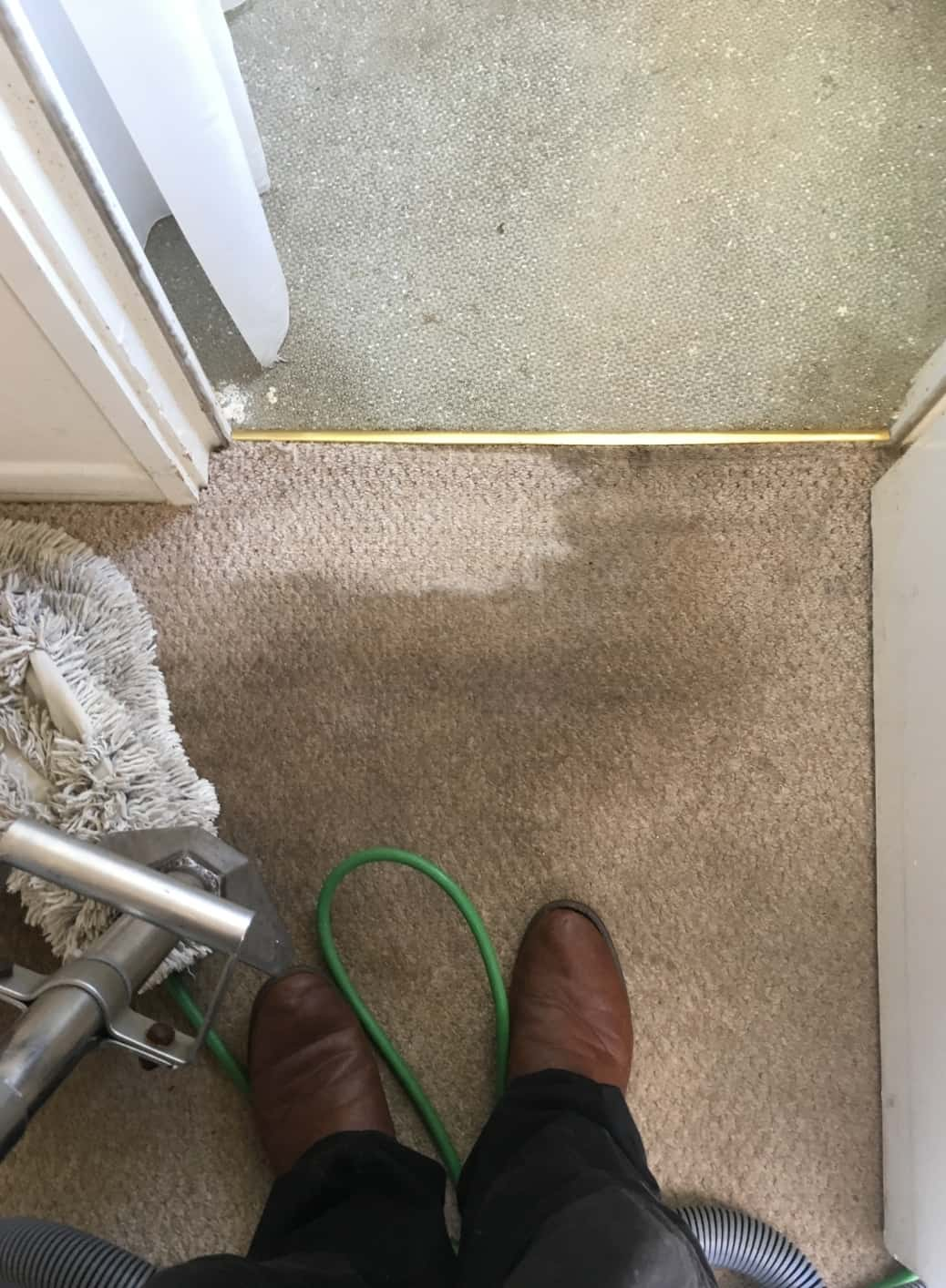 Carpet Cleaning Before & After Photos 12