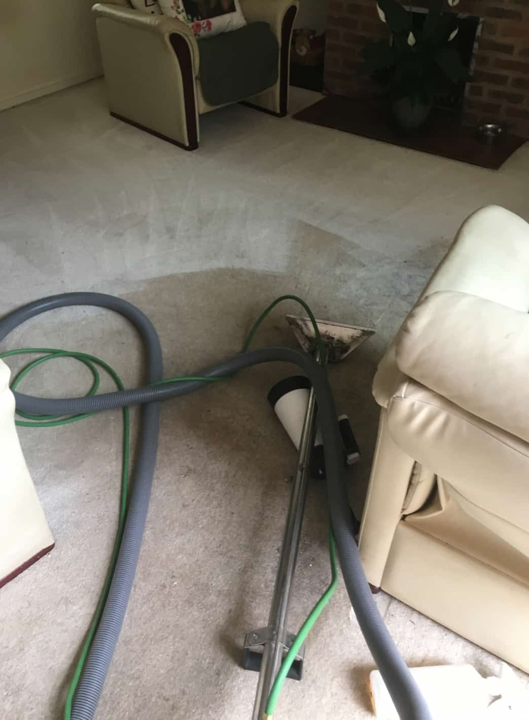 Carpet Cleaning Before & After Photos 14