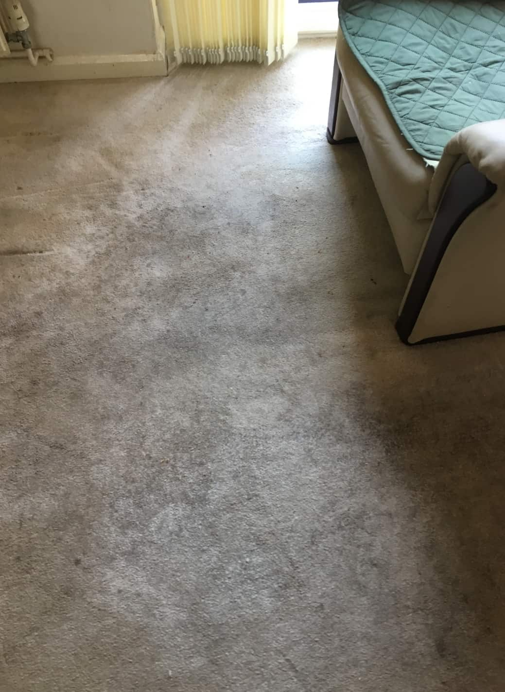 Carpet Cleaning Before & After Photos 15