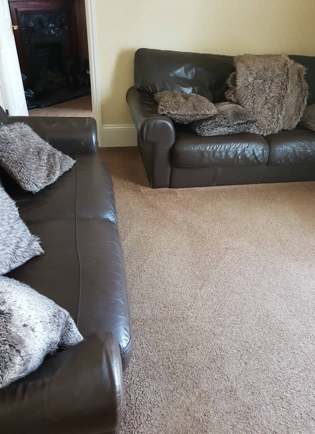 Carpet Cleaning Before & After Photos 27