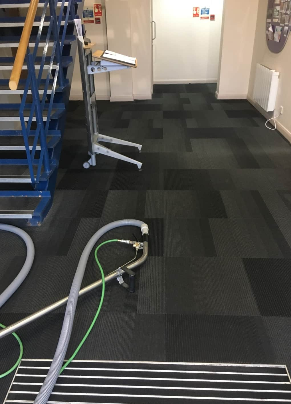 Carpet Cleaning Before & After Photos 6